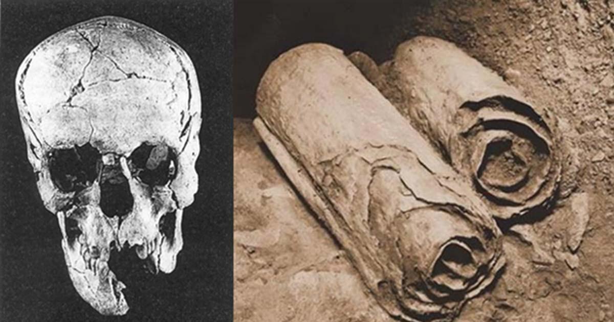 死海文書を書いた人物が判明? 発掘された人骨の正体とはの画像 1/3