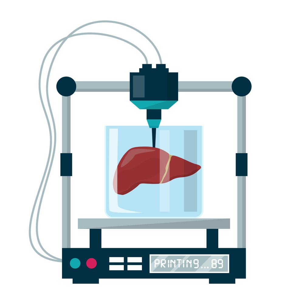 肝臓の全機能をもった「ミニ肝臓」を3Dプリンタで作ることに成功の画像 3/3