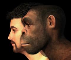人類のDNAには未知種族の「ゴースト」DNAが含まれていたの画像 3/3