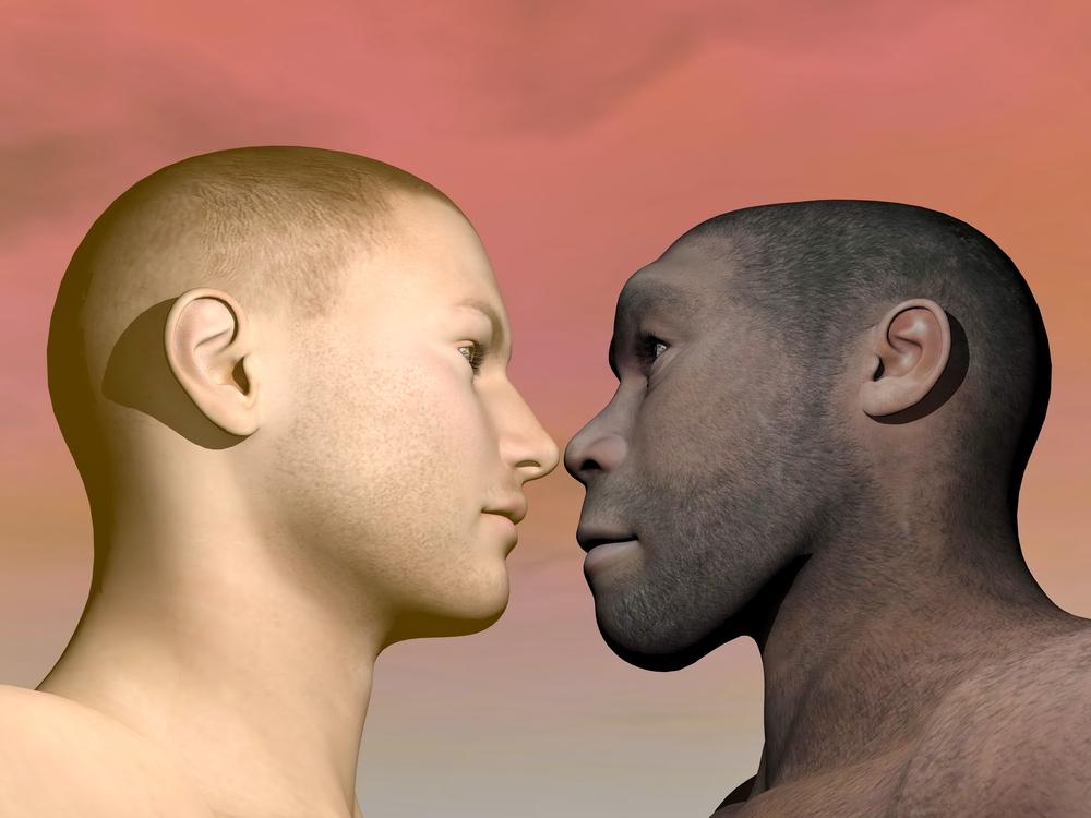 人類のDNAには未知種族の「ゴースト」DNAが含まれていたの画像 1/3