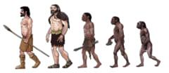 人類のDNAには未知種族の「ゴースト」DNAが含まれていたの画像 2/3