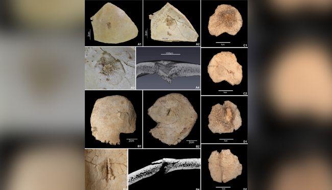 """7000年前の「大虐殺の痕」がスペインの洞窟内で発見!""""外国人嫌い""""を証明?の画像 1/4"""