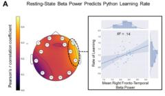 能力の高いプログラマーは数学力より言語能力が高いの画像 3/3