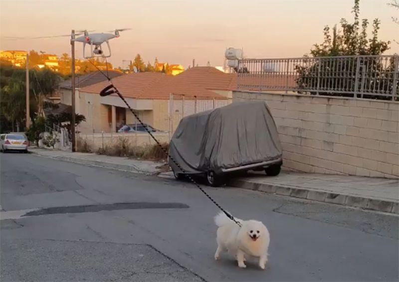 コロナで隔離された街で「ドローンが犬を散歩させる」光景が出現