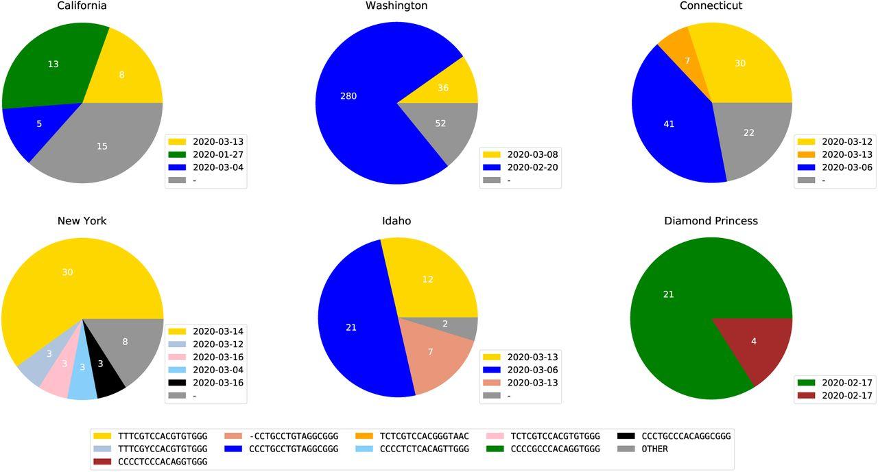 新型コロナの「遺伝指紋」を作成した結果、日本にヨーロッパ型が侵入したことが判明の画像 4/6