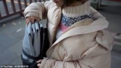 空気でふくらむ折りたたみ式電動スクーター「Poimo」を東京大学が開発の画像 2/4