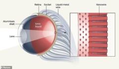 ヒトの目を超越した人工眼球「EC-EYE」とはの画像 2/5