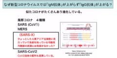 日本人は新型コロナウイルスに対して免疫を持っている可能性 低い死亡率の原因?の画像 5/6
