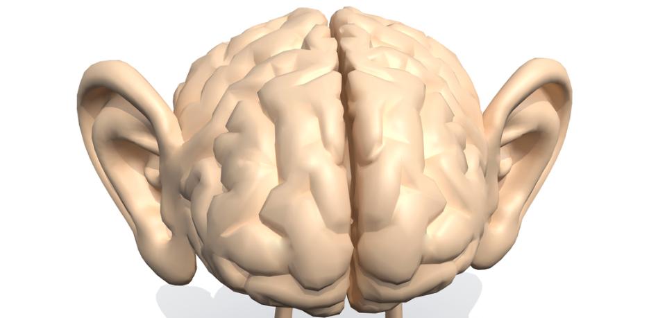 """プログラマーの脳は作業中に""""誰かの声""""を聞いていると判明! 数学力より音声理解力が重要の画像 1/3"""