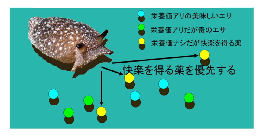 """電脳ウミウシを薬物依存にするシミュレーションで、生物が""""クスリ漬け""""になる過程が明らかに"""