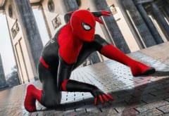 スパイダーマンになりたかった少年、毒グモに手を咬ませて救急搬送される(ボリビア)【虫注意】の画像 2/3