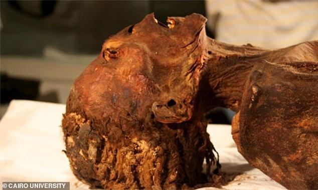 3000年前の「叫ぶ女のミイラ」の死因が判明! CTスキャンにより死の直前の様子が明らかにの画像 1/4