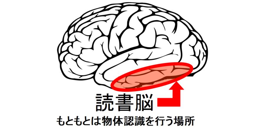 読書を可能にする「読書脳」の存在が確認される。読み書きの基本コードを解明!