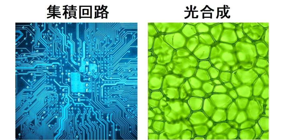 水と空気と光だけで有機燃料を製造できる「人工光合成」パネルが開発される。集積回路がギ酸を生成!?