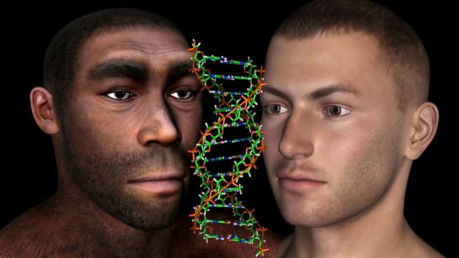 ヒトは未知の古代人のDNAを持っていた!? 「他人種との交配の歴史」が丸はだかに