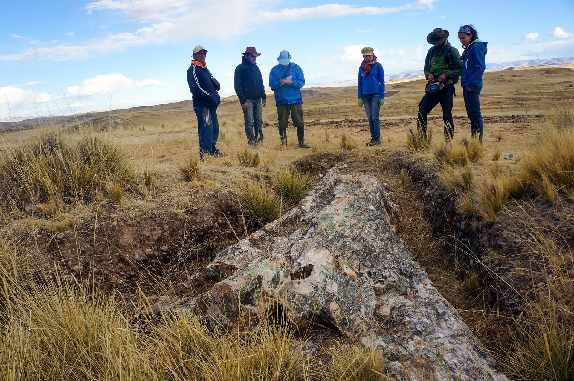 ペルーで発見された1000万年前の「巨木の化石」から、既存の古代気候モデルの予想と異なる証拠が見つかる!の画像 1/4
