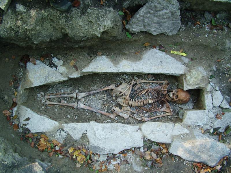 骨、遺跡、お墓