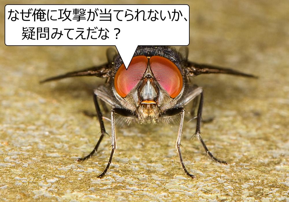ハエを叩くのはなぜこんなに難しいの?世界を捉える速度「フリッカー融合頻度」がヒトと違っていたの画像 1/5