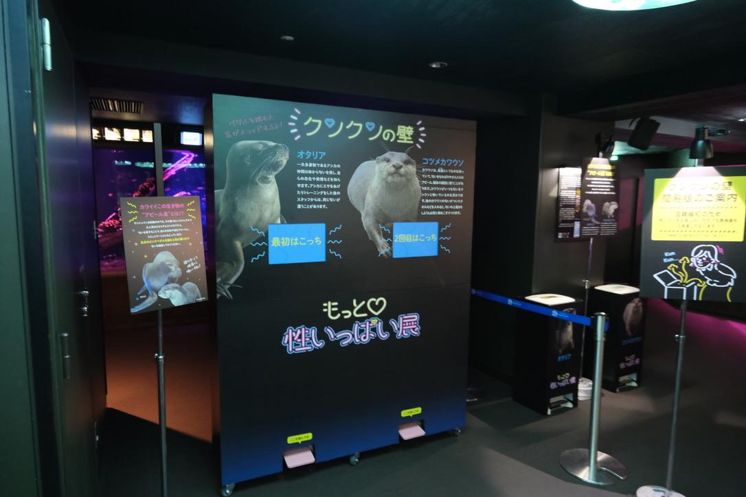 夜のサンシャイン水族館「もっと性いっぱい展」に行ってきました。真っピンク空間にドキドキ…の画像 15/21