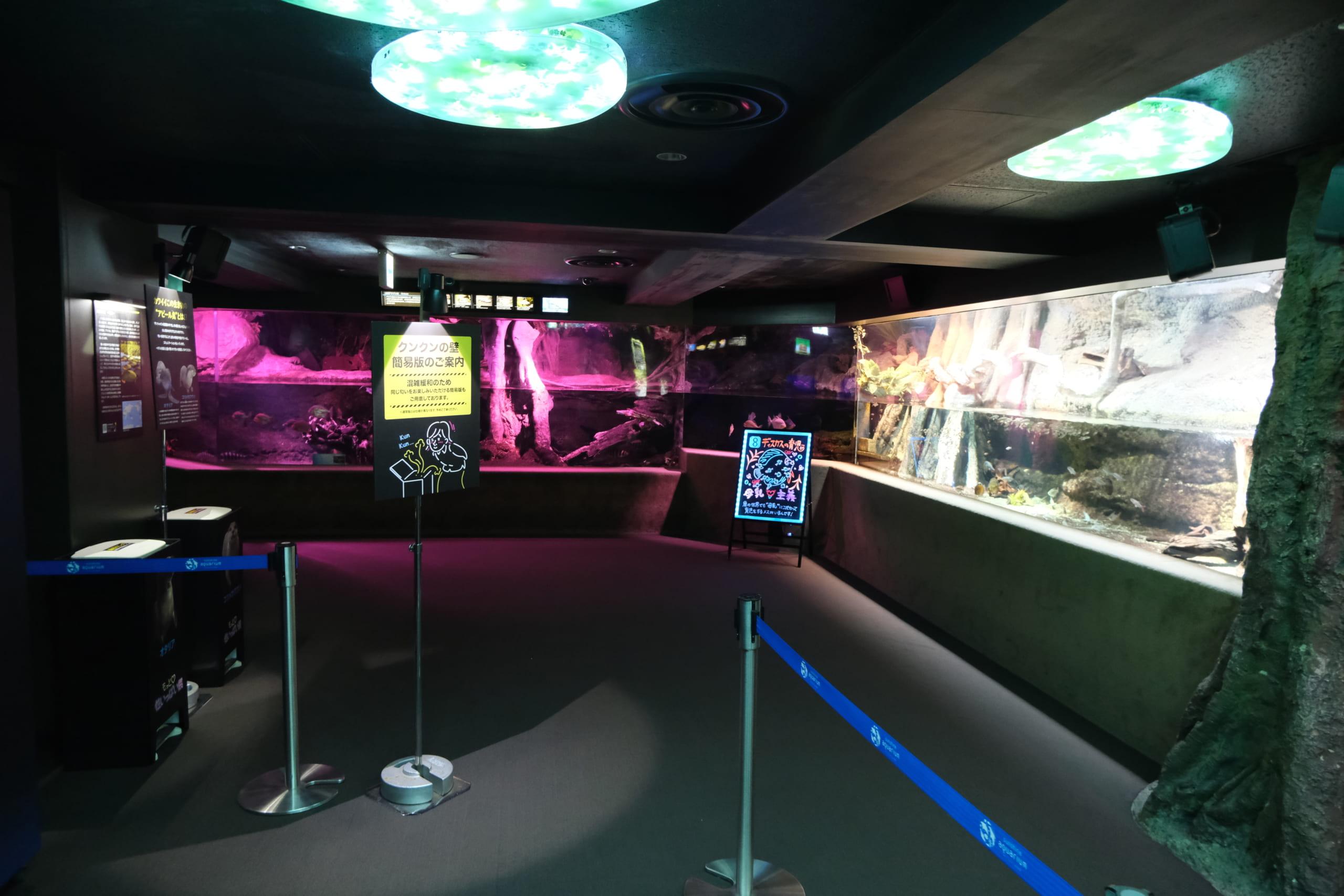 夜のサンシャイン水族館「もっと性いっぱい展」に行ってきました。真っピンク空間にドキドキ…の画像 14/21