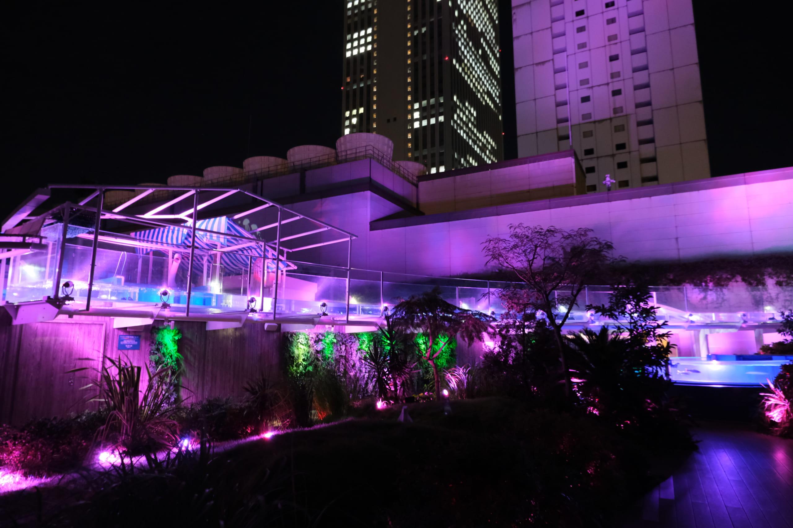夜のサンシャイン水族館「もっと性いっぱい展」に行ってきました。真っピンク空間にドキドキ…の画像 4/21