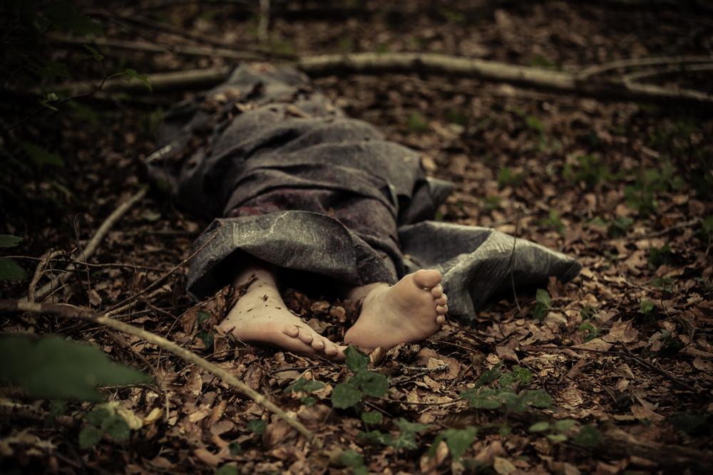 """「植物の変化」から""""森に隠された死体""""を発見する研究の画像 2/4"""