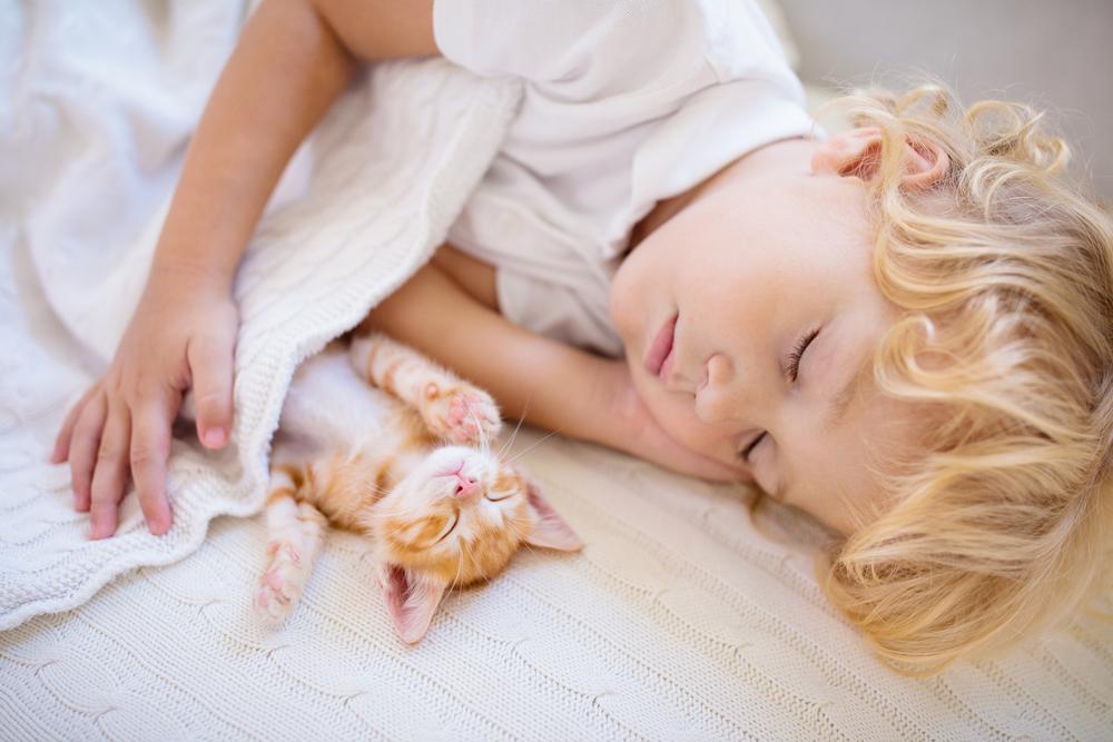 眠る子供と子猫