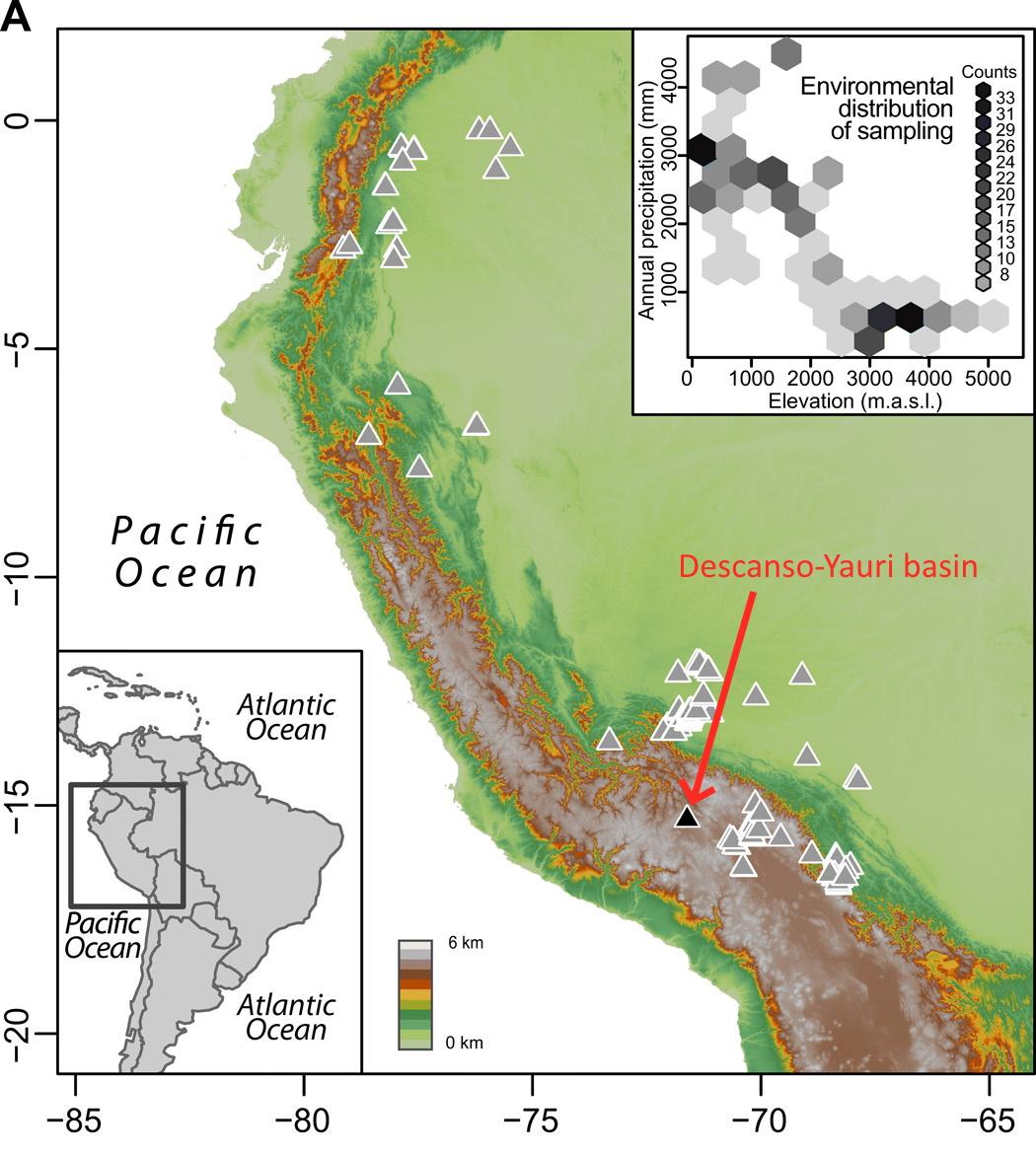 ペルーで発見された1000万年前の「巨木の化石」から、既存の古代気候モデルの予想と異なる証拠が見つかる!の画像 3/4