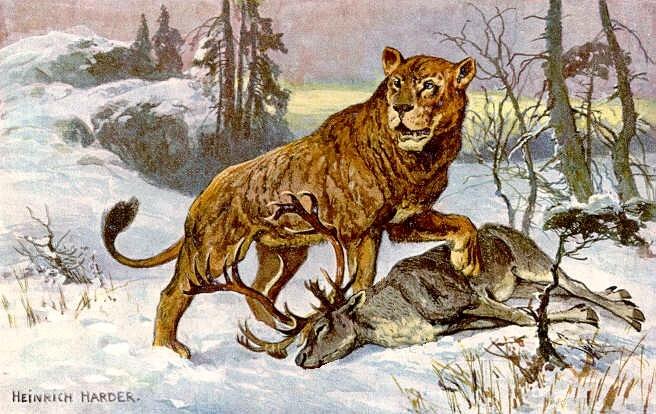 トナカイを狩るホラアナライオンのイメージ