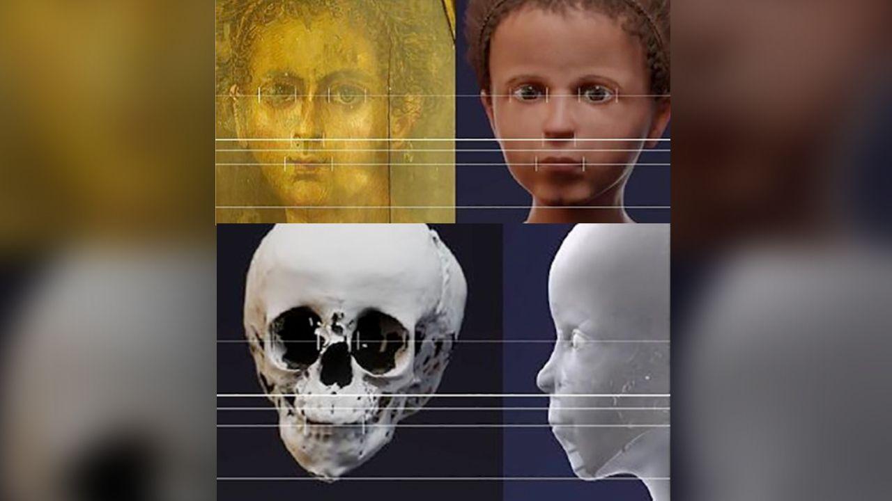 頭蓋骨、顔、復元像