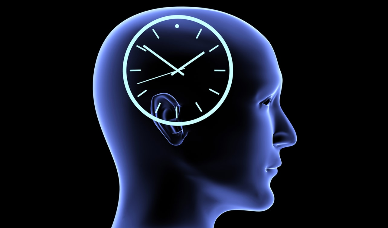 """「時間の長短」を感じる脳の部位が特定される!ナゾだった""""時が早く過ぎる日""""の原因とは?の画像 4/5"""