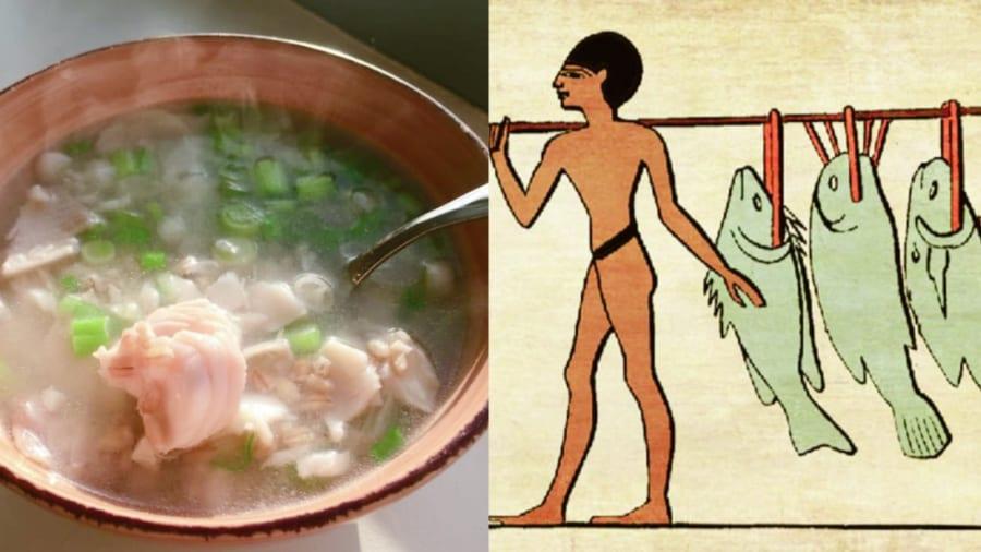 """ミイラの「最後の晩餐」から古代エジプトの料理レシピを完全再現!料理名は""""ティラピアのシチュー"""""""