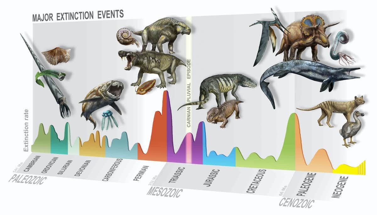大量絶滅年表。