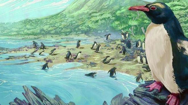 """すべてのペンギンの祖先は、""""失われた第8大陸ジーランディアの住人""""だった"""