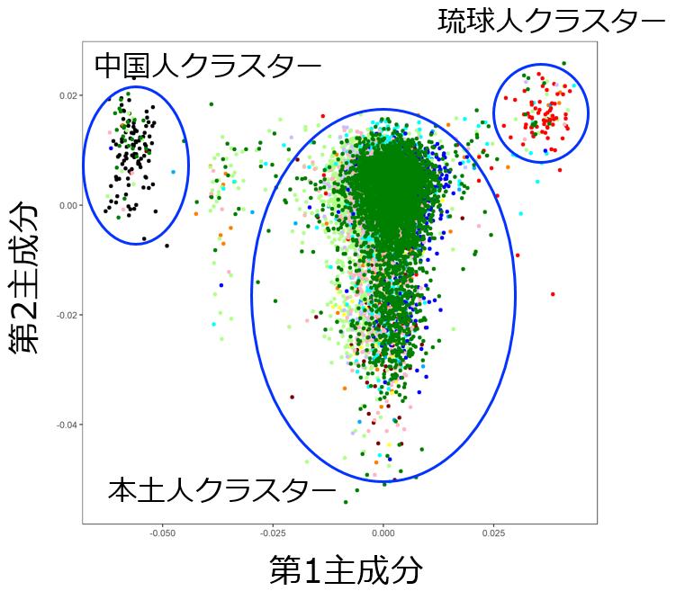 遺伝子クラスターは大きく3つに分けられる