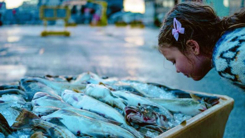 """魚の生臭さが気にならない人は、""""食生活によって遺伝子が突然変異している""""かも"""
