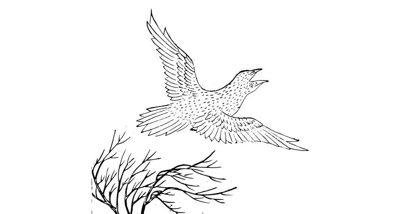 古代中国の伝承にある比翼の鳥は1枚しか翼を持たないために飛ぶためにはオスとメスの2羽が寄り添わなければならない