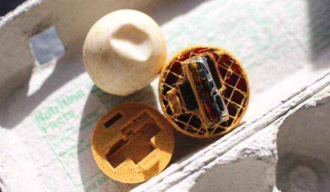GPSを仕込んだニセの卵