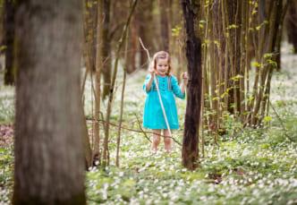 森で遊ぶ子供は免疫力が向上する