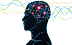 神経インパルスは超音波で生じるという仮説