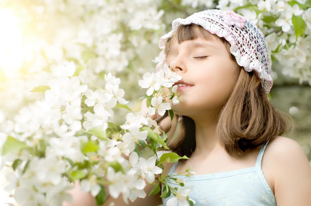 嗅覚受容体によってにおいを感じる(花の香り)