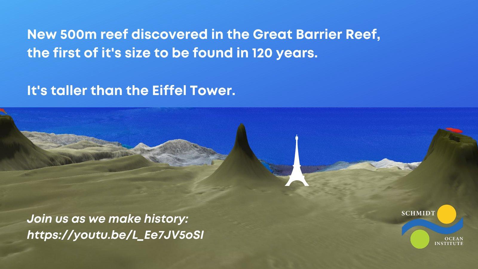 500m級の巨大サンゴ礁を発見