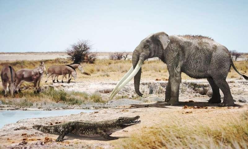 アフリカのワニは600万年前にスペインに渡っていた?