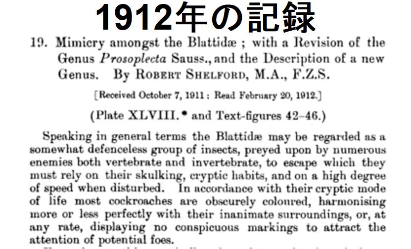 100年以上前に社会性ゴキブリの存在を記録した論文の冒頭
