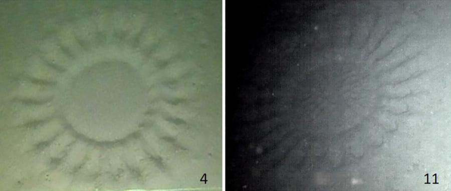 オーストラリアの海底で見つかったサークル