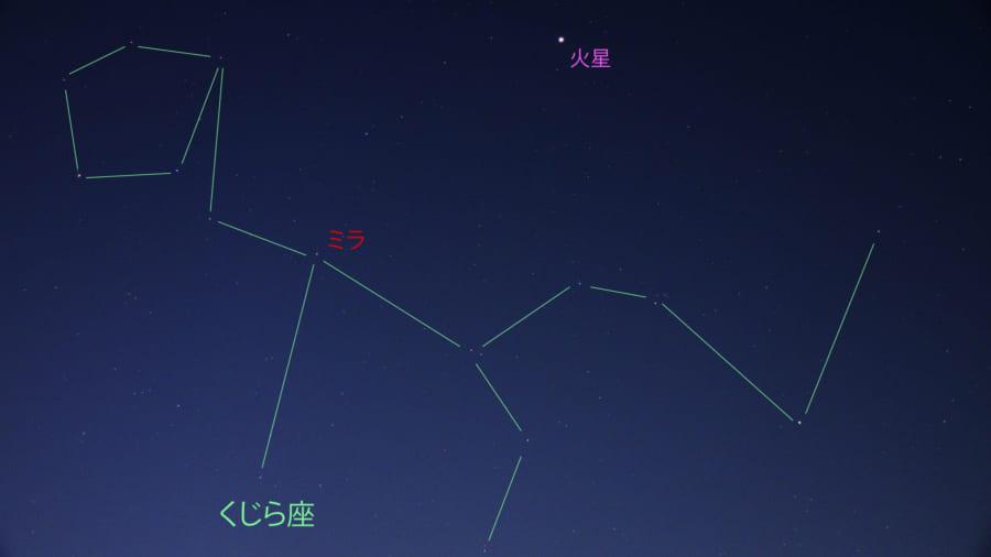 【速報】いま、くじら座の変光星、ミラが見えるぞ!