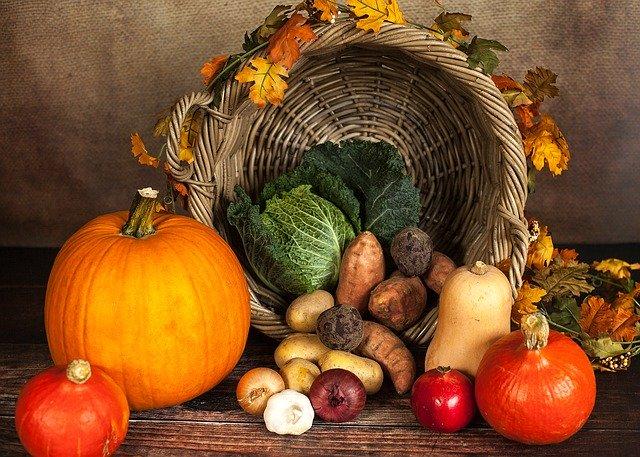 野菜の鮮やかな色は栄養素カロテノイドによるもの。