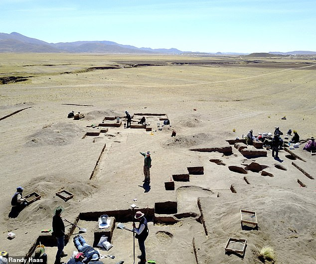 「Wilamaya Patjxa」での発掘調査の様子