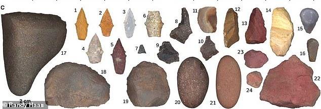 墓地から出土した石器の数々