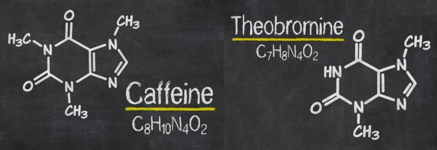 メチルキサンチン類(カフェインとテオブロミン)の構造。メチル基(CH3)の数が異なるだけでほとんど同じ。